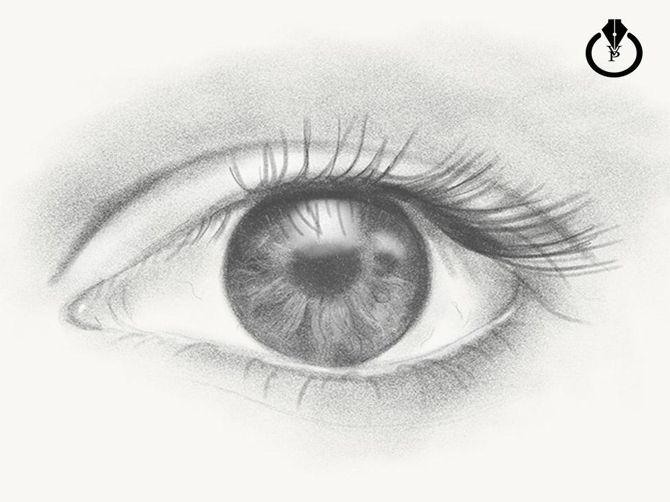 https www behance net gallery 37293333 how to draw a realistic looking eye photoshop sketch