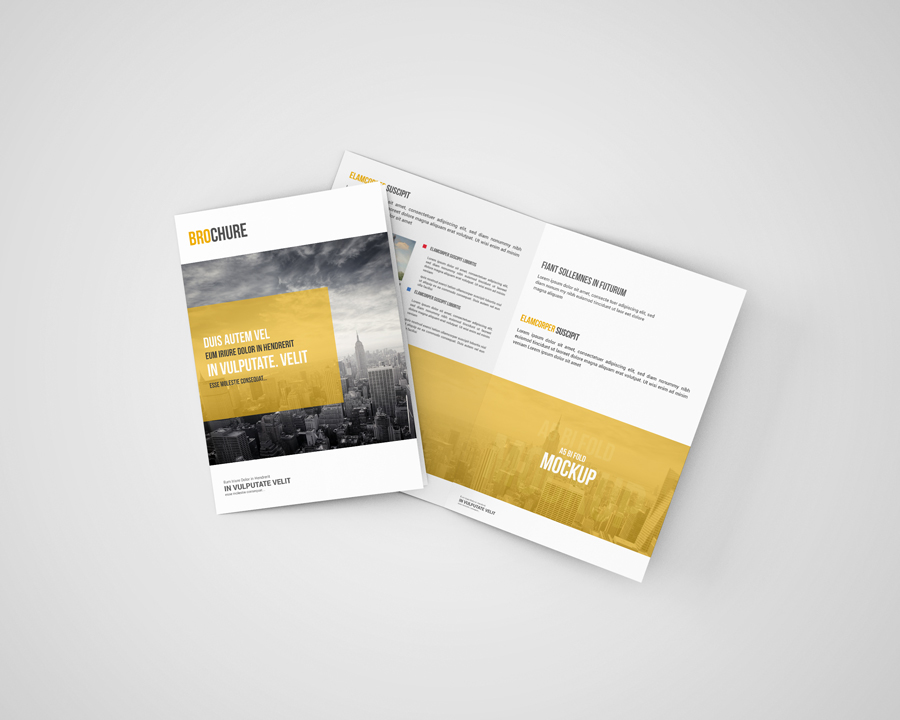a5 bi fold brochure mockup free on behance