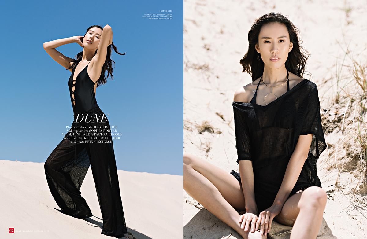Dune on SAIC Portfolios