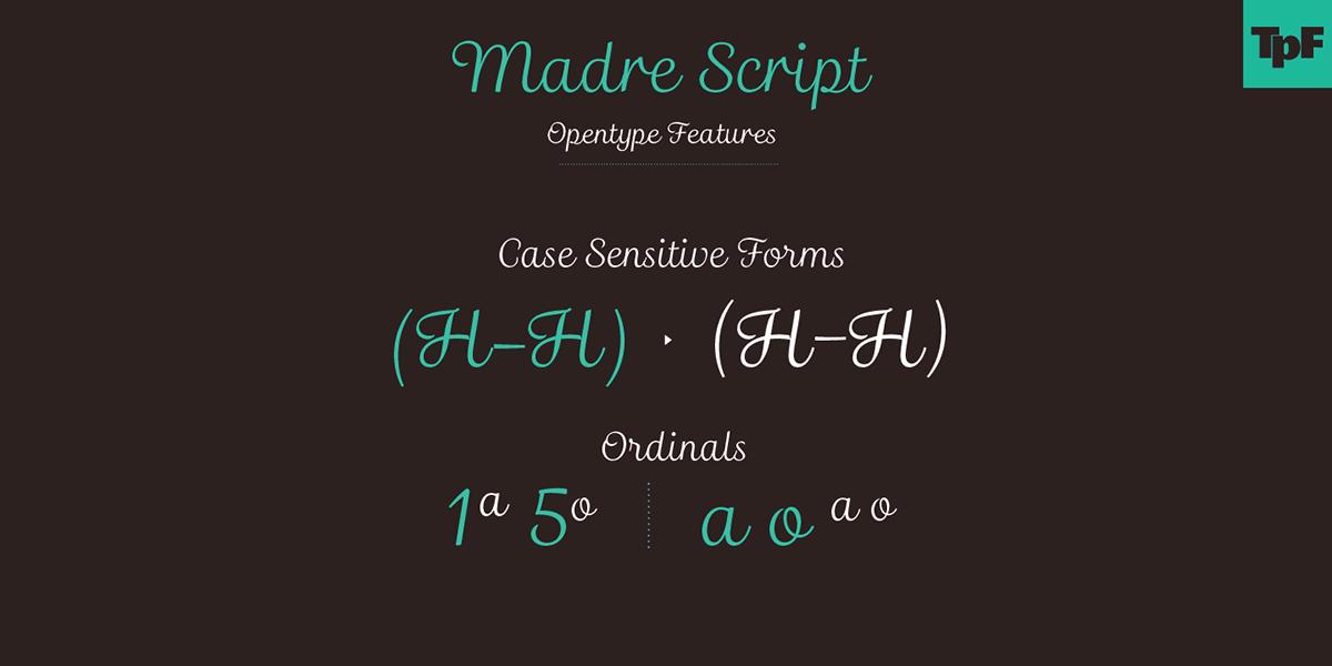 banner banners Layout Typeface Madre Script Script Matheus Fragoso typefolio Marconi Lima tipografia type