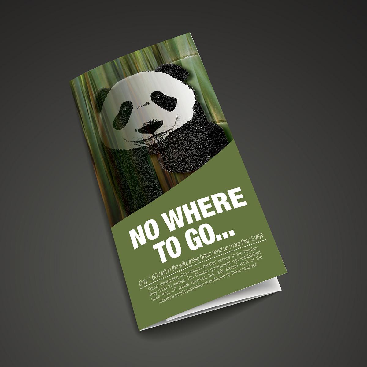 Save the Panda on Behance