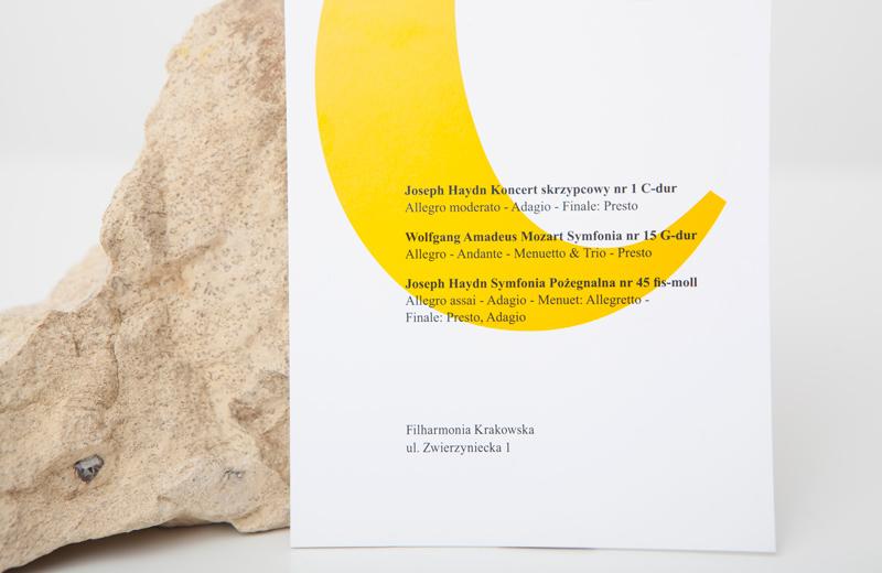 times new roman visual identity typography   Website Webdesign branding