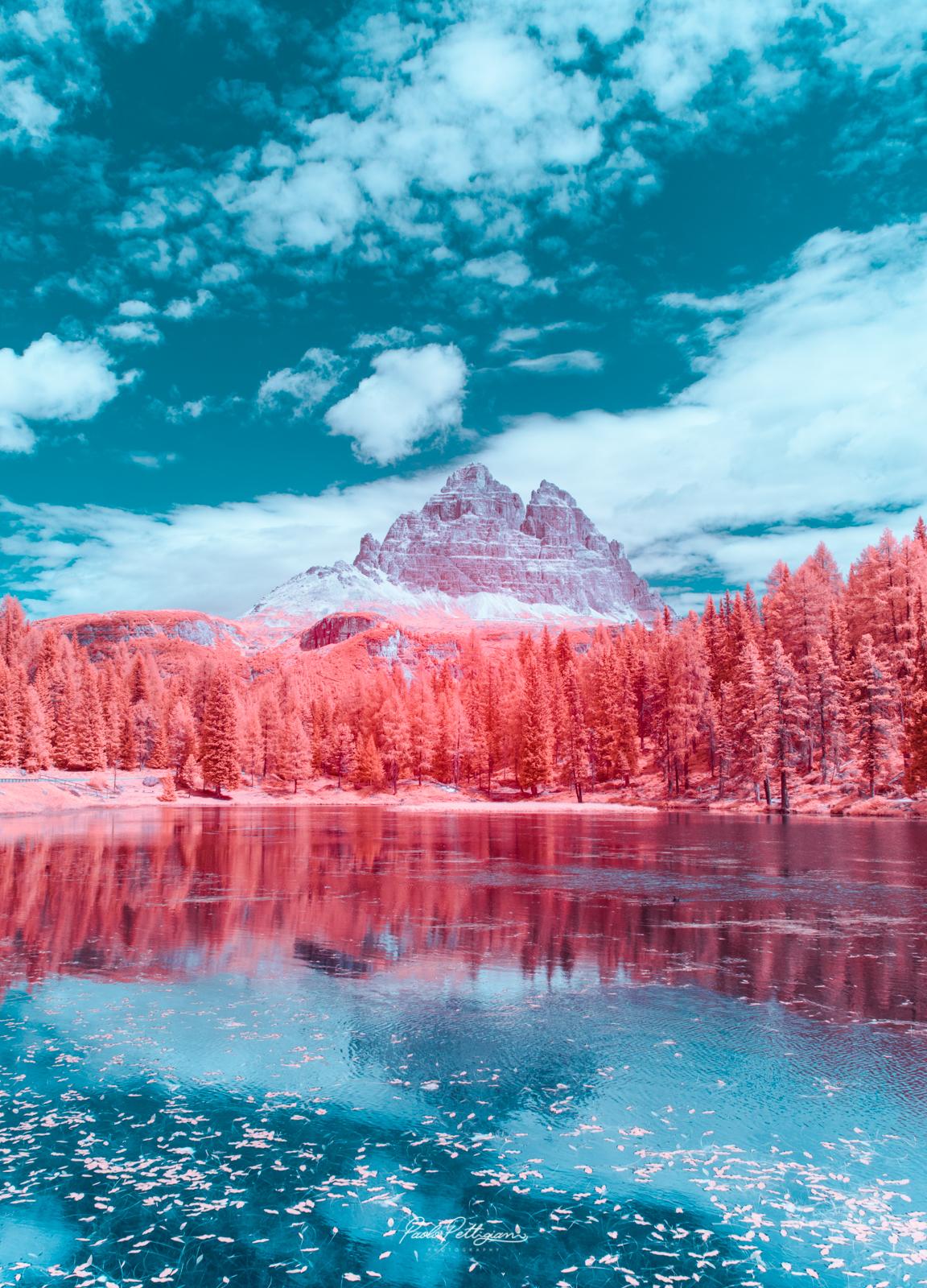 Fotografii cu infraroșu