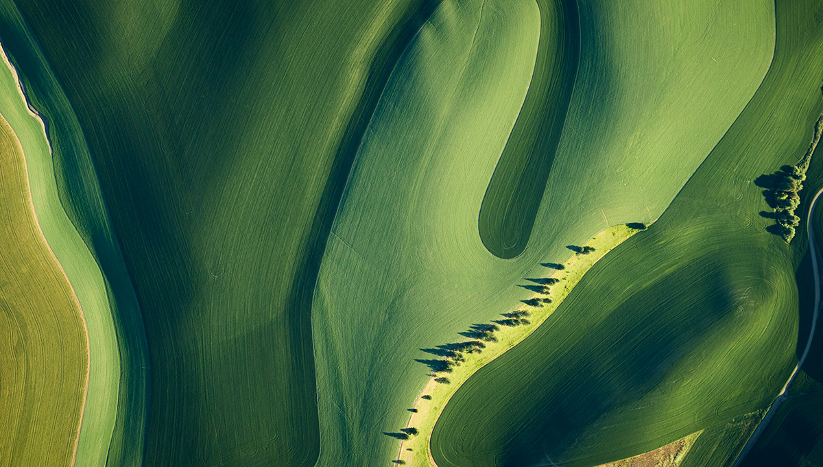 AERIAL FINE ART ABSTRACT,CORPORATE AERIAL ART,Eastern Washington,FARMING ARTWORK,FARMLAND AGRICULTURE,HARVEST WHEAT IMAGES,PALOUSE AERIAL IMAGES,phase one aerial,ROLLING HILLS PRODUCE,WASHINGTON STATE AERIAL