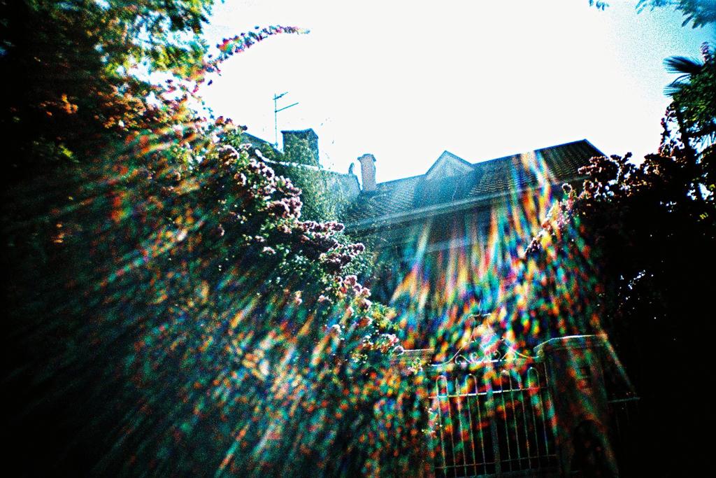 la sardina  kodak elitechrome 100 ozan mutlu dursun Analogue Lomography film photography