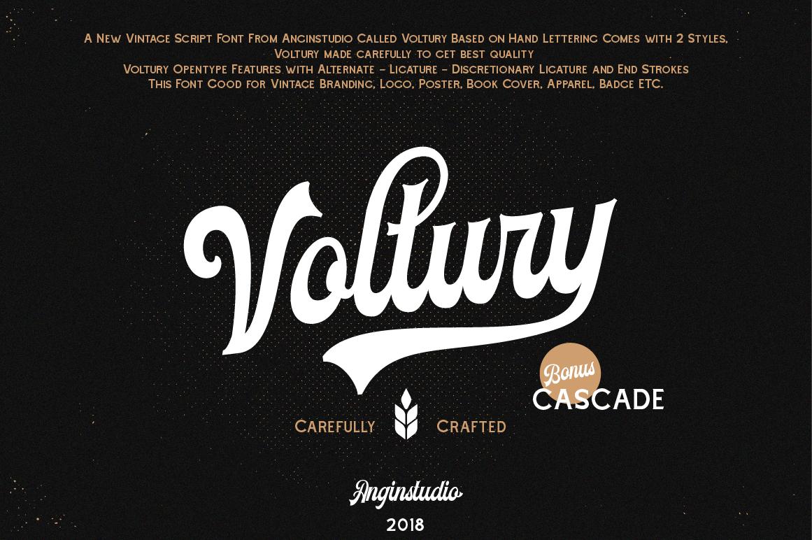 Voltury Script Font (FREE Demo Version) on Behance