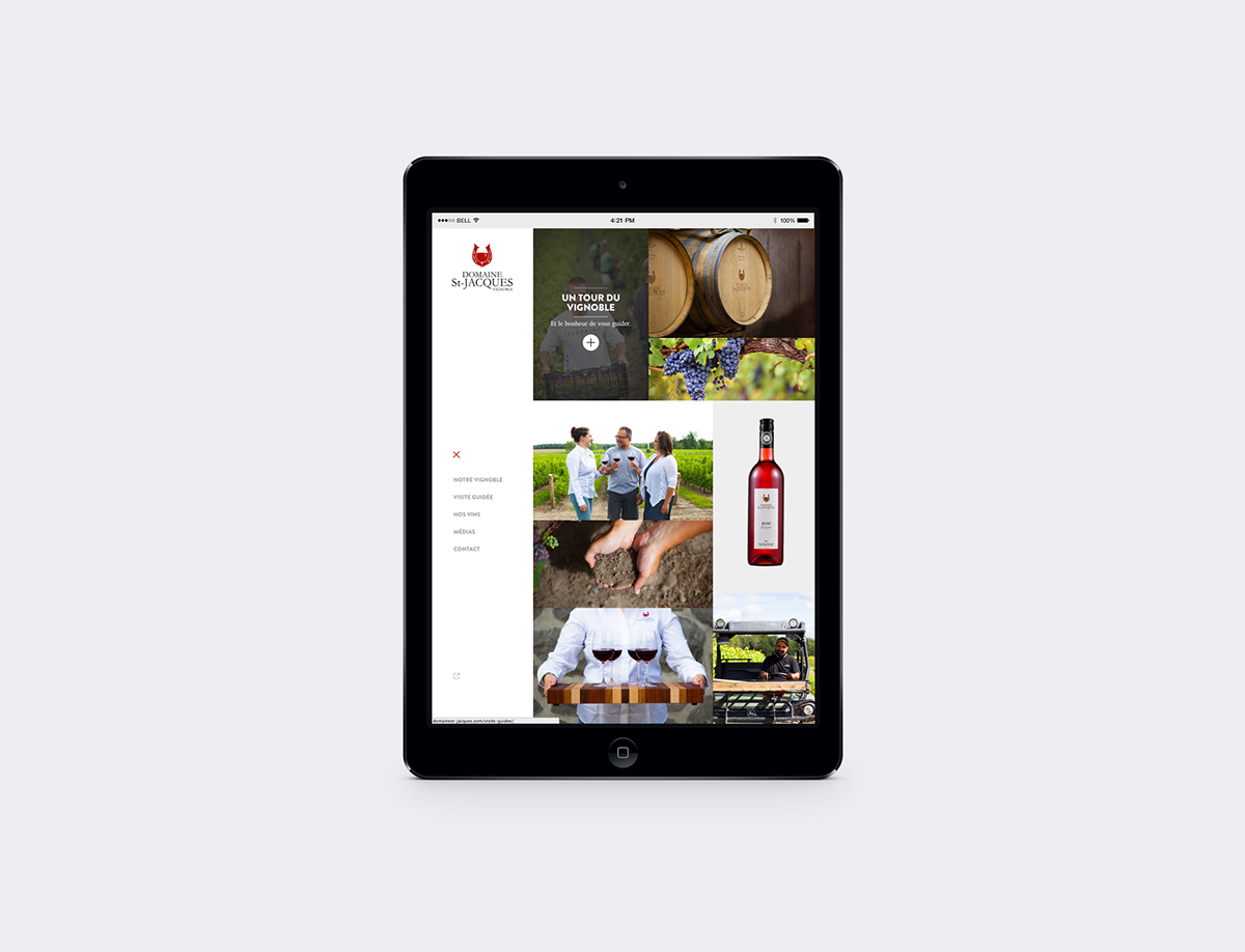 Domaine St-Jacques,viniculture