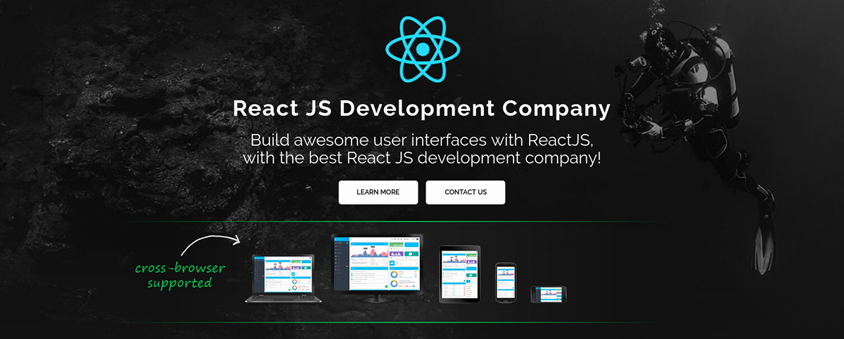 React JS Development | Web Page Design on Pantone Canvas Gallery