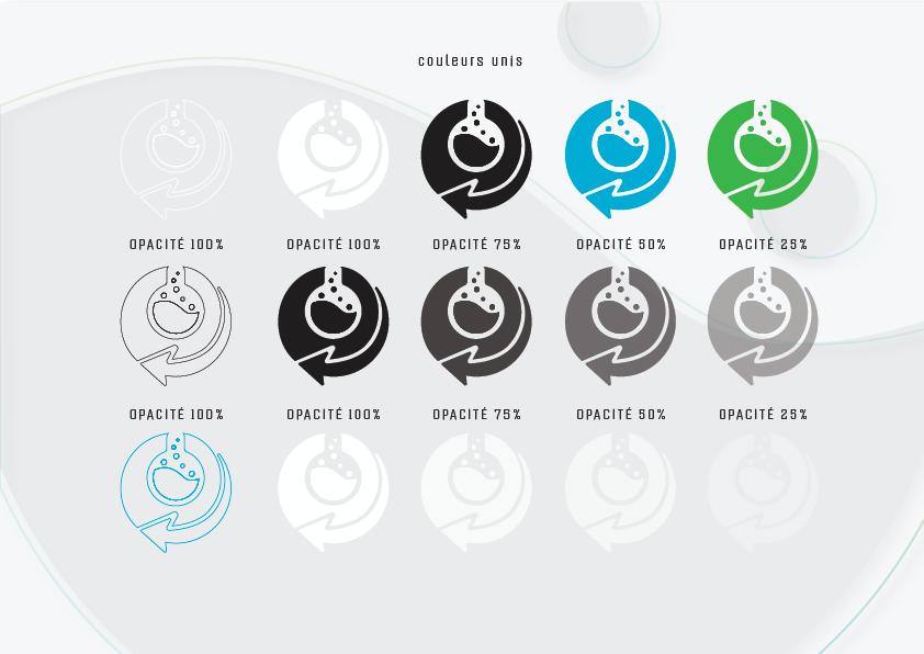branding  branding Logo charte graphique colors design Illustrator logo Logotype