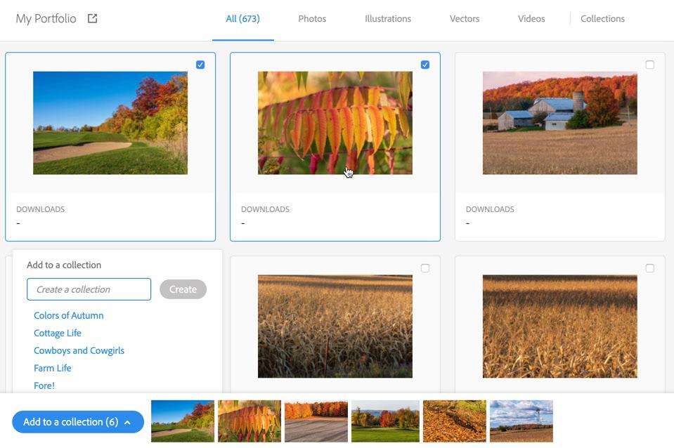 adobe stock Adobe Portfolio branding  marketing   Self Promotion Creative Cloud integration workflow
