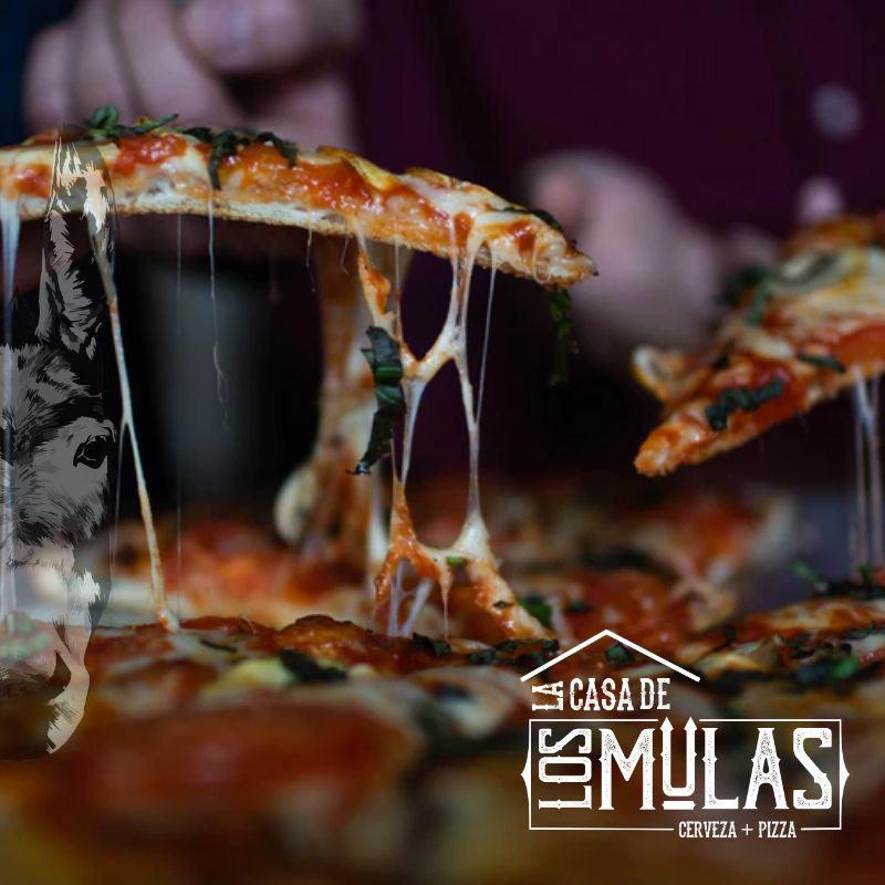 Image may contain: pizza, aquarium and food