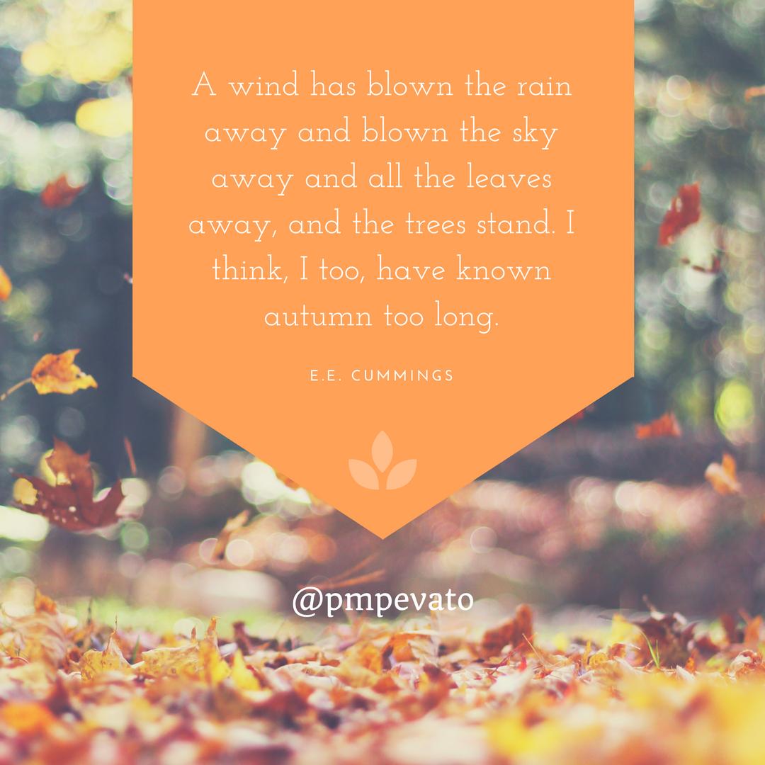 autumn Equinox Fall instagram twitter tumblr facebook colours Quotes leaves pumpkins russet gold red orange