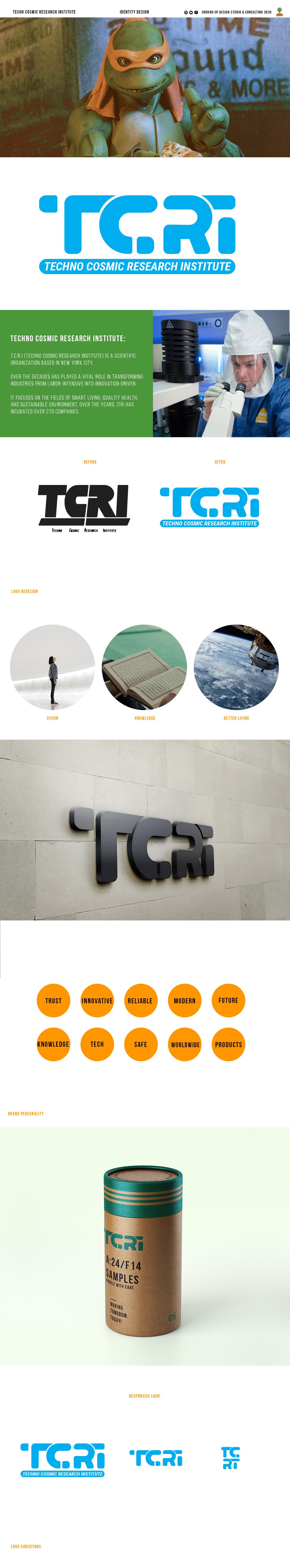 identity logo mkt redesign TMNT