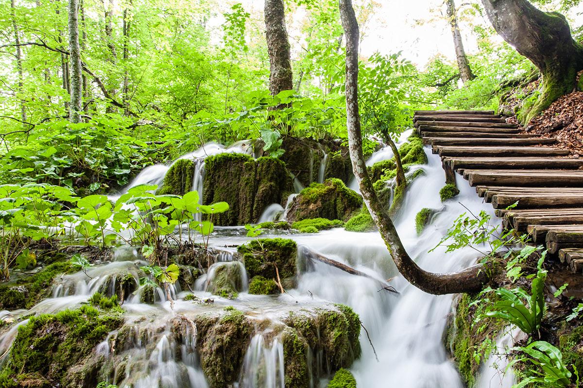 Adobe Portfolio Photography  landscapes Nature