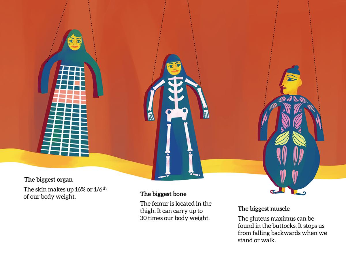 3 puppets,text :biggest organ(skin), biggest bone (thigh), biggest muscle (gluteus maximus)
