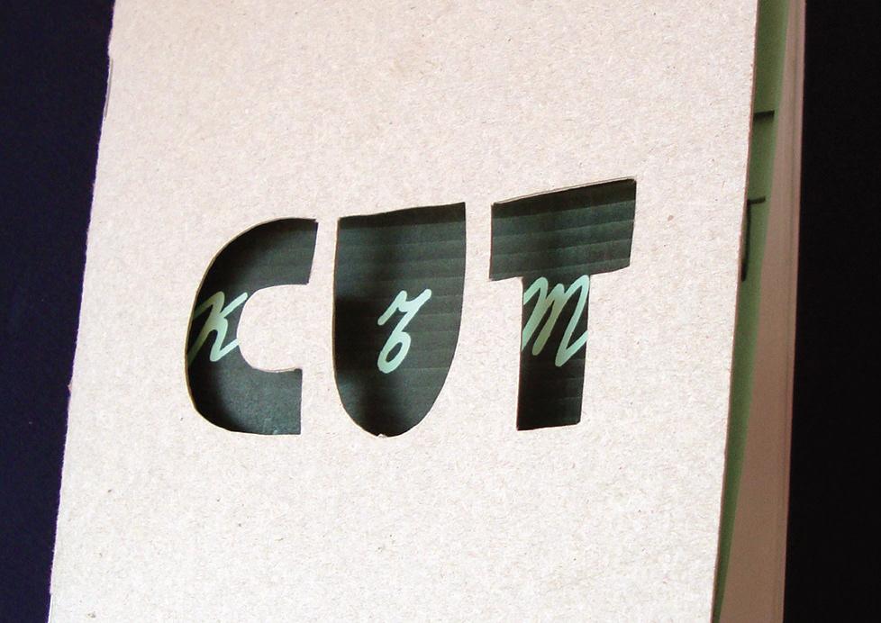 book design DIY graphic design  Logo Design Zine