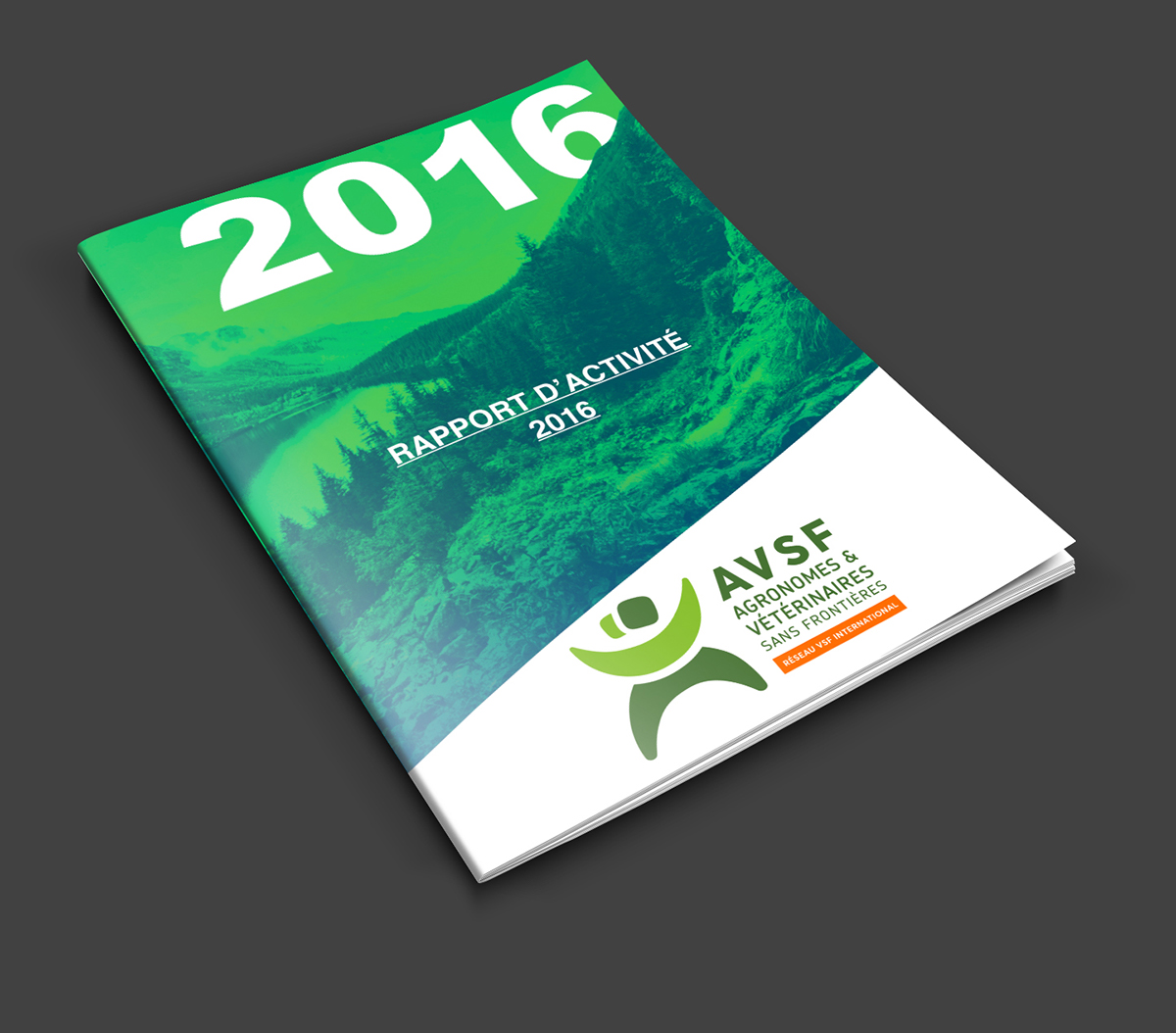 Rapport D Activité Avsf Annual Report Avsf On Behance