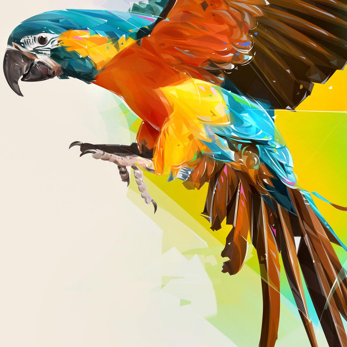 beauty bird cover design Nature parrot Pop Art portrait wild life animals