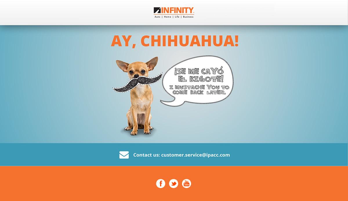 infinity service idai co insurance customer baskan