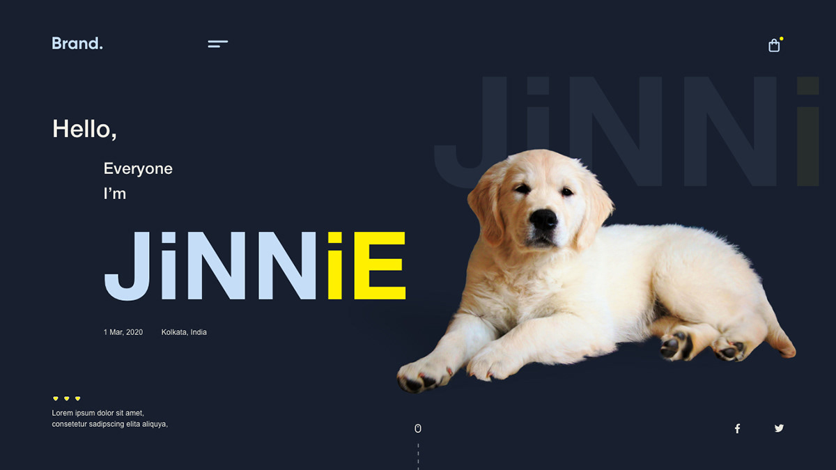colors design designer dribbble Logo Designs ui designs UI inspiration  UX Designs webdesigns Webdevelopment