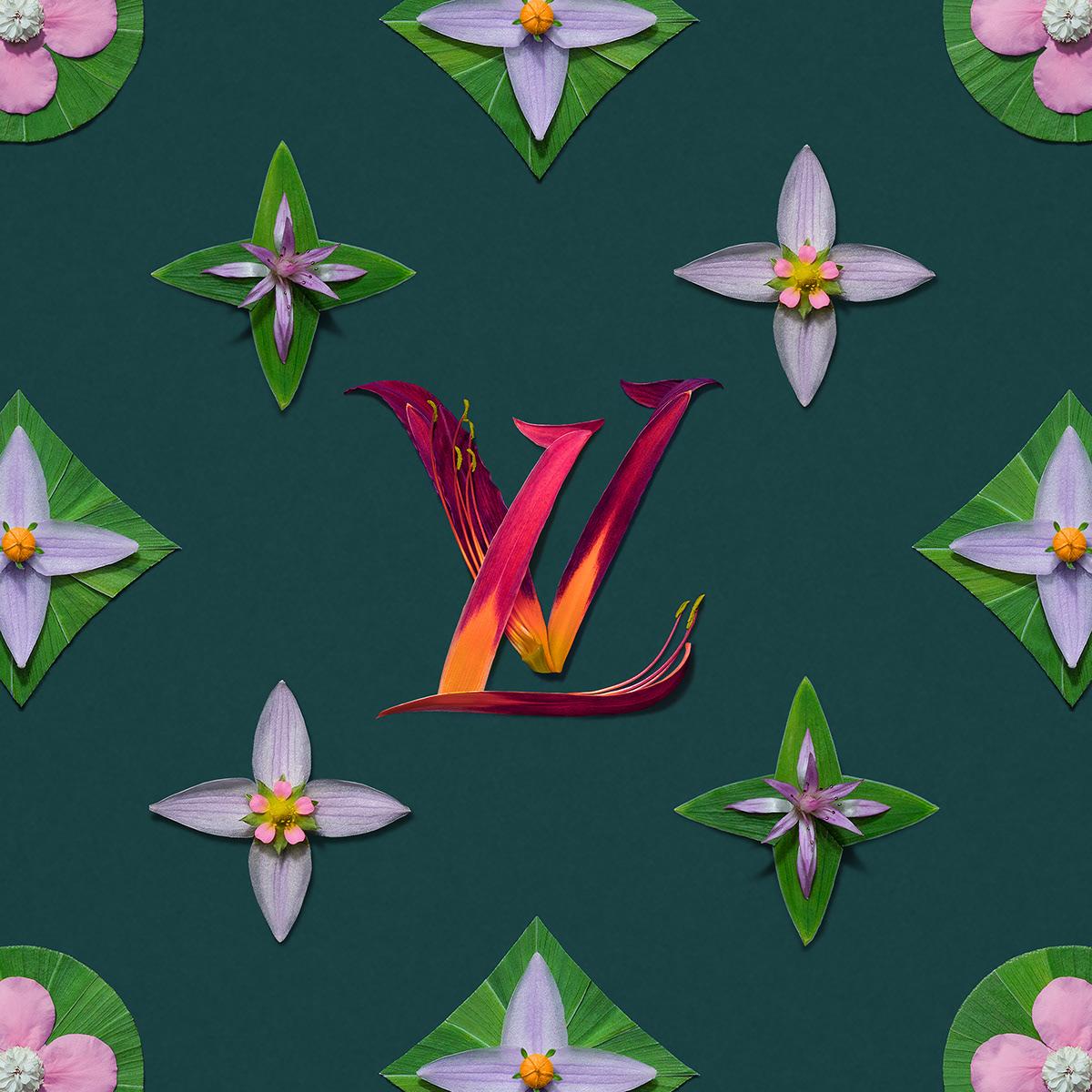 art colour creative design Fashion  floral Nature Patterns Photography