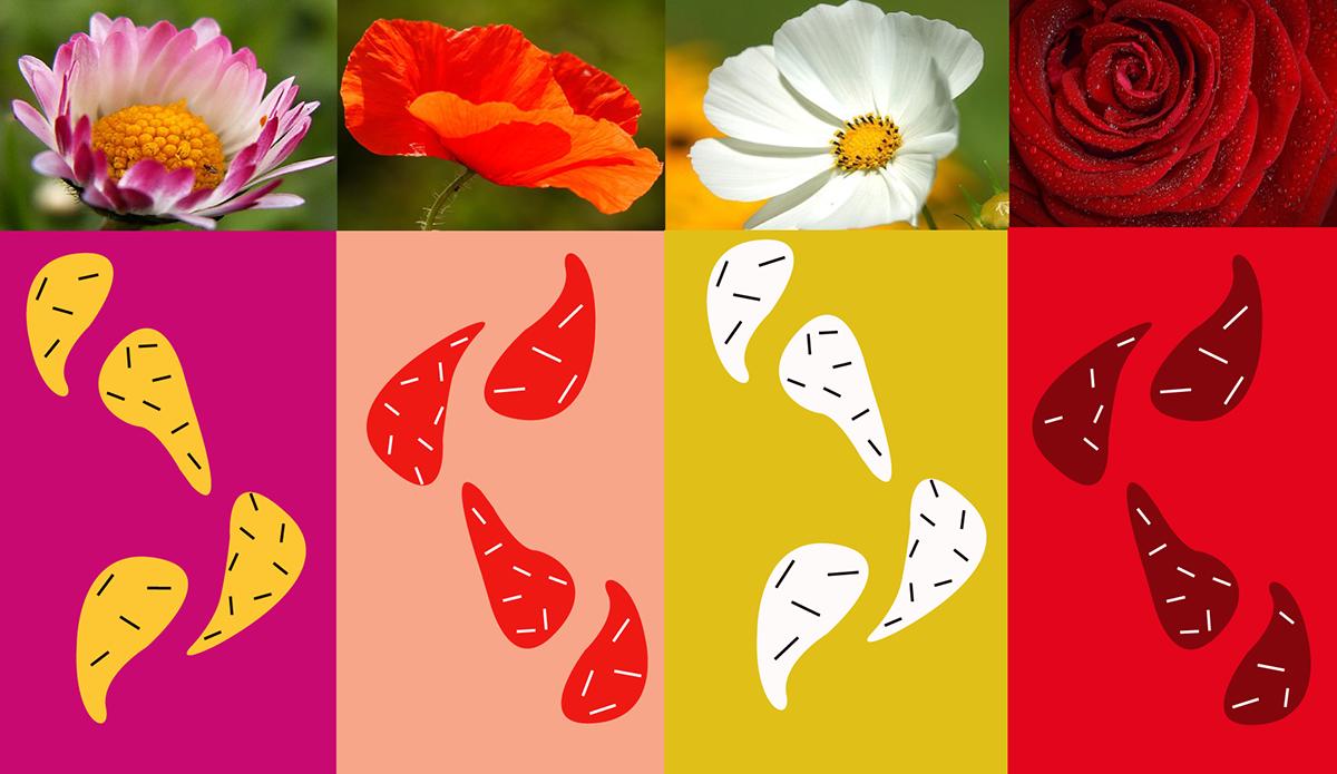 Petals Shop Brand Identity Logo Cards On Wacom Gallery