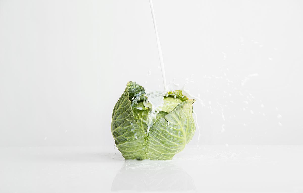 milk fresh dairy products green vegetables sour cream yogurt