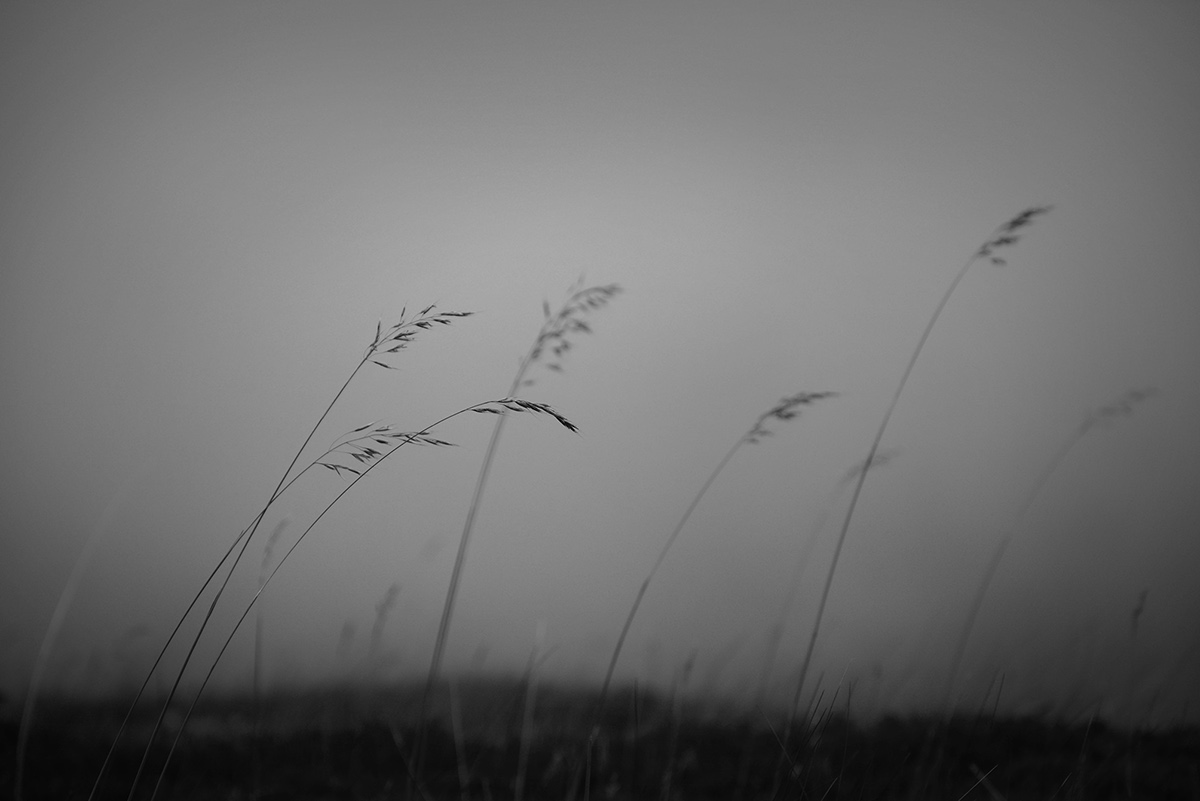 norway,mountains,autum,winter,Nature,Landscape,sea,dramatic,b/w,black and white,wild,raw,atmosphere,Moody