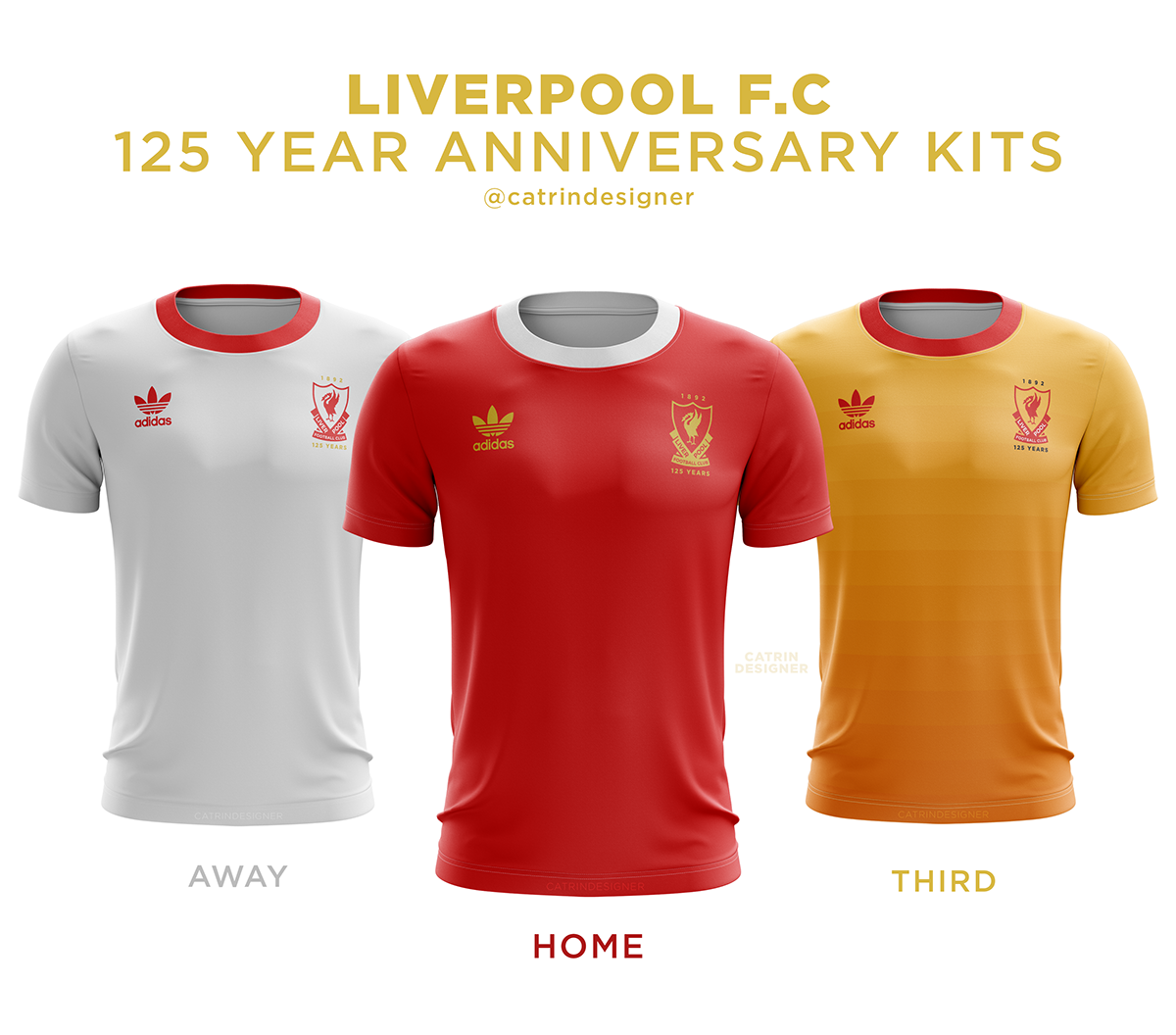 ba52791ac Liverpool FC 125 Year Kit Concept on Behance