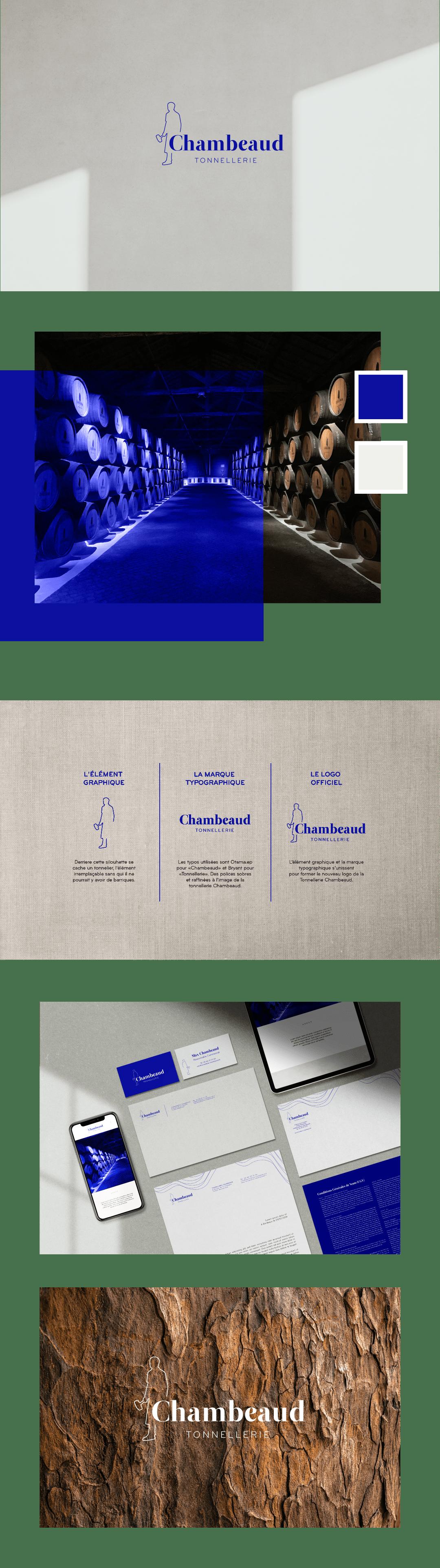 adn branding  Drawing  identity logo vector