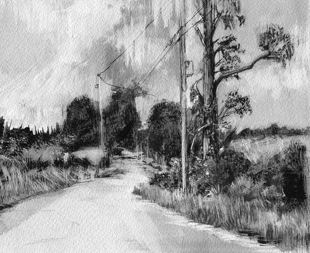 Ink drawing of a local rural road exploring using different brushstrokes and pen techniques ink and some white acrylic ink overlays and washes