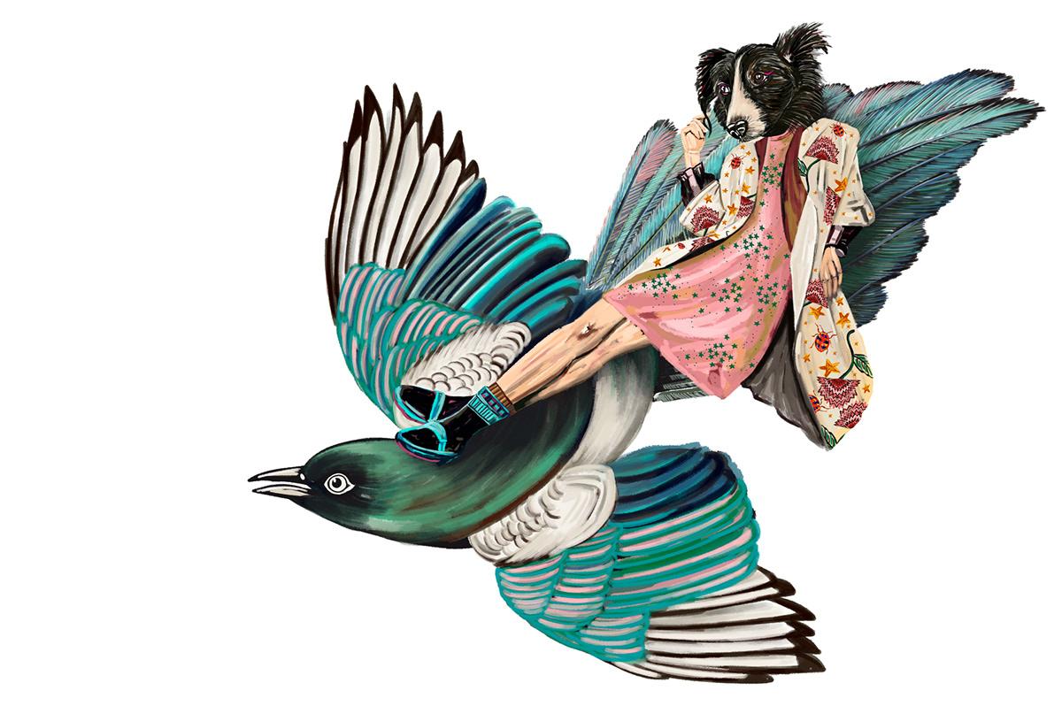 Image may contain: cartoon, bird and art