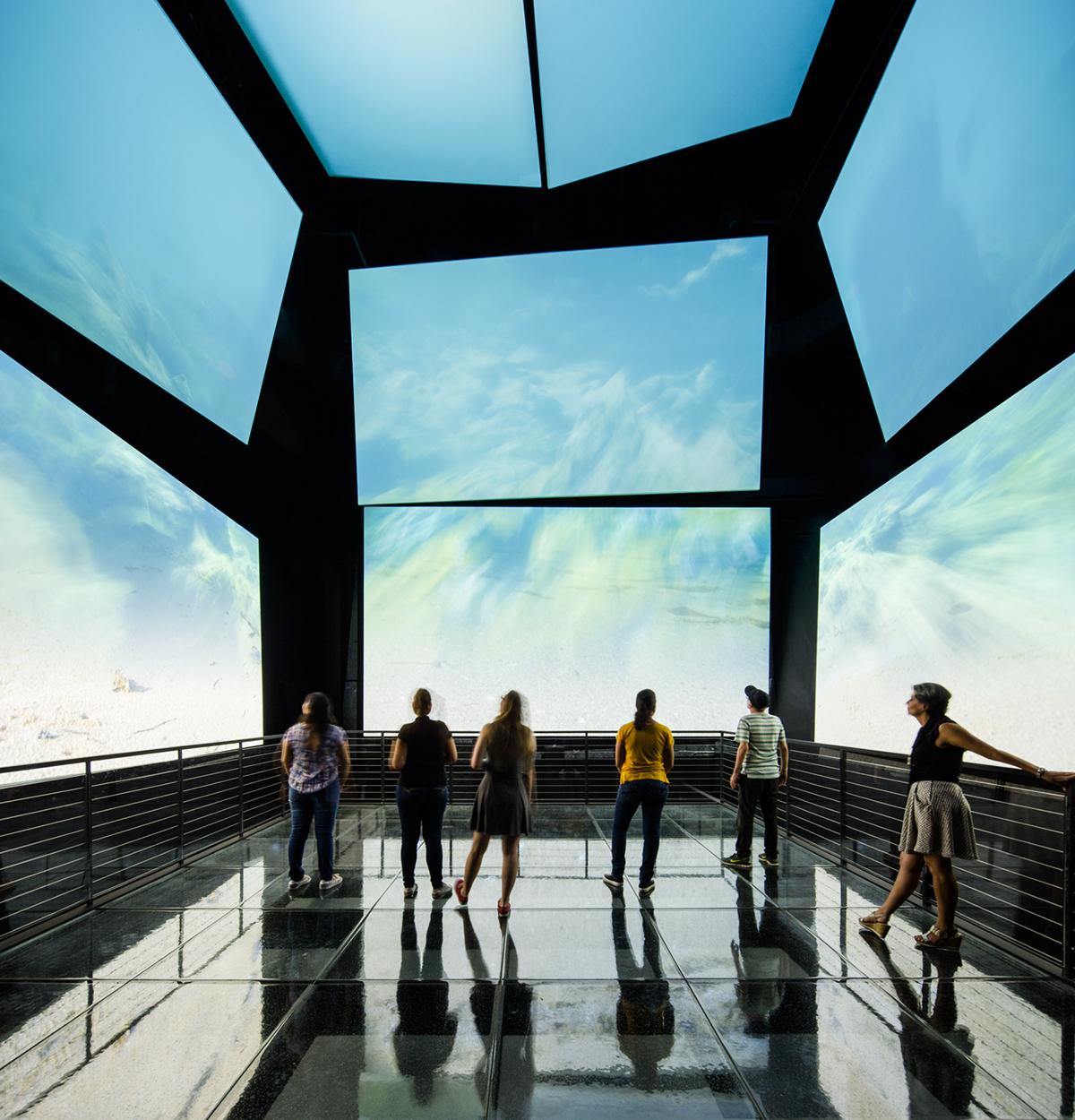 Bruce Mau experience design