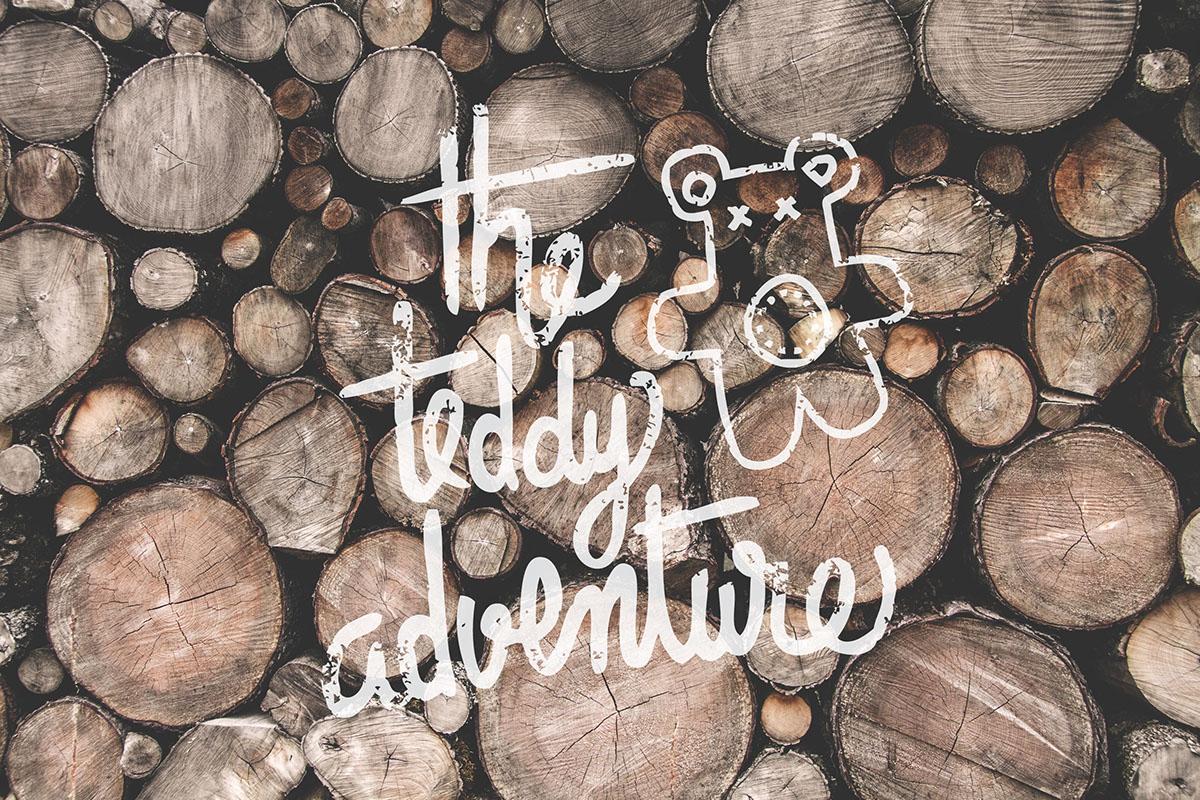 lettering wood handmade brand letters Teddy color wacoom digital logo calligrafia Mango type Retro vintage