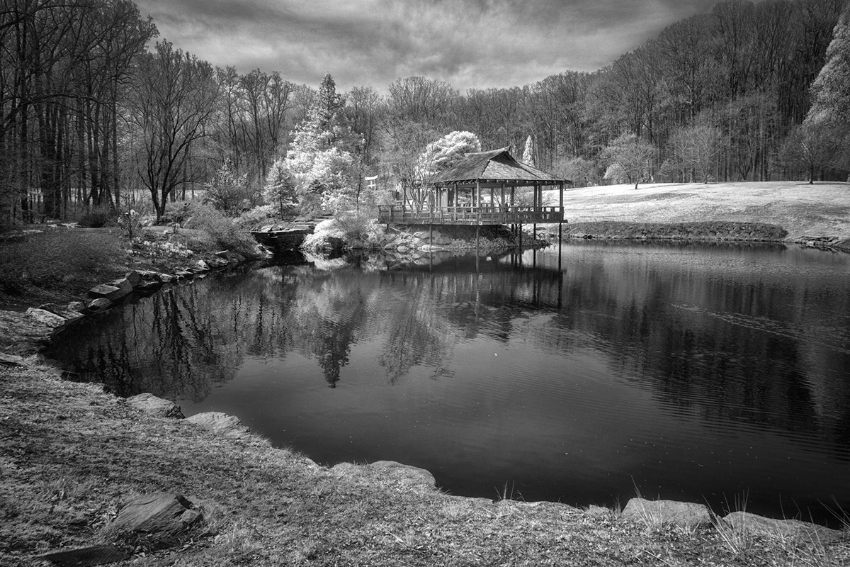 Black and white 720nm infrared image of trees around a pond