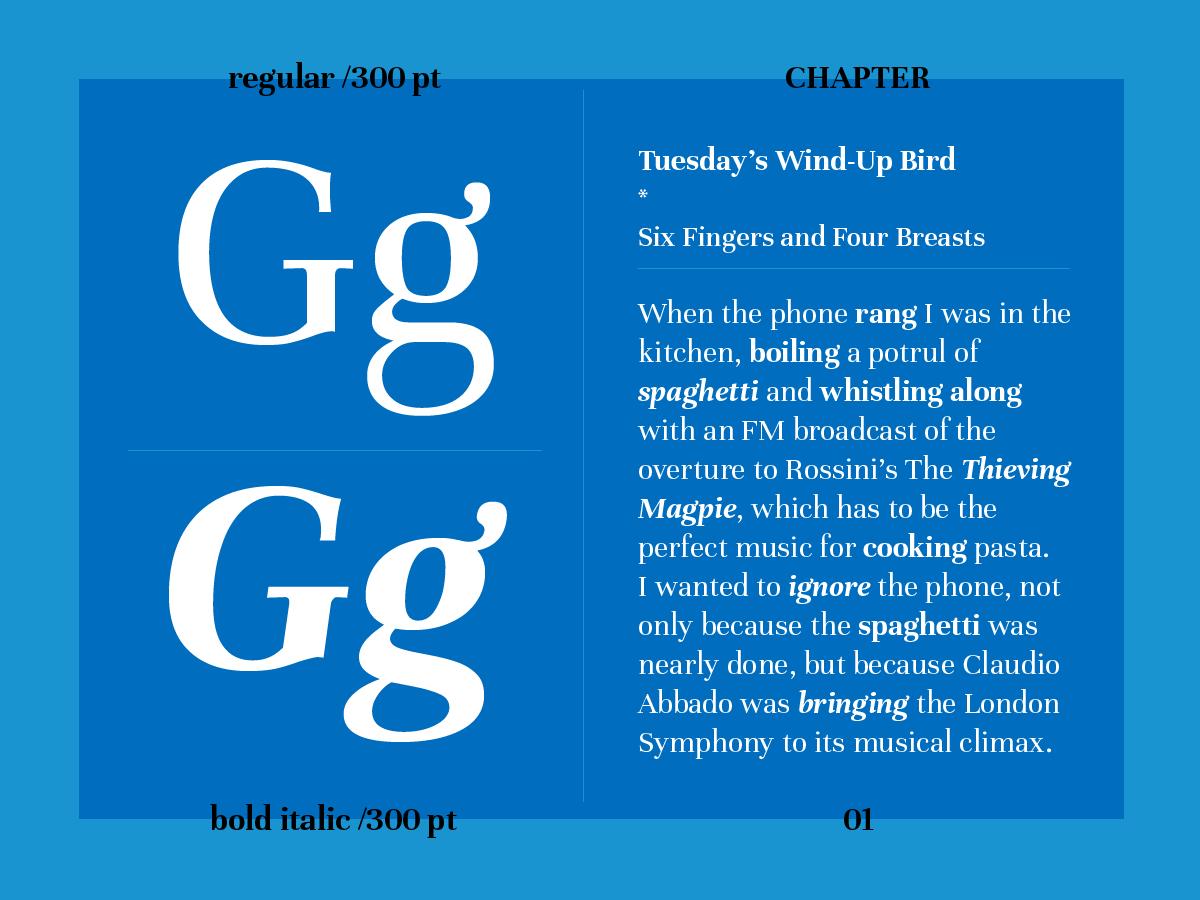 typo type typography   tipografia font fuente Omnibus Type unna google fonts Typeface