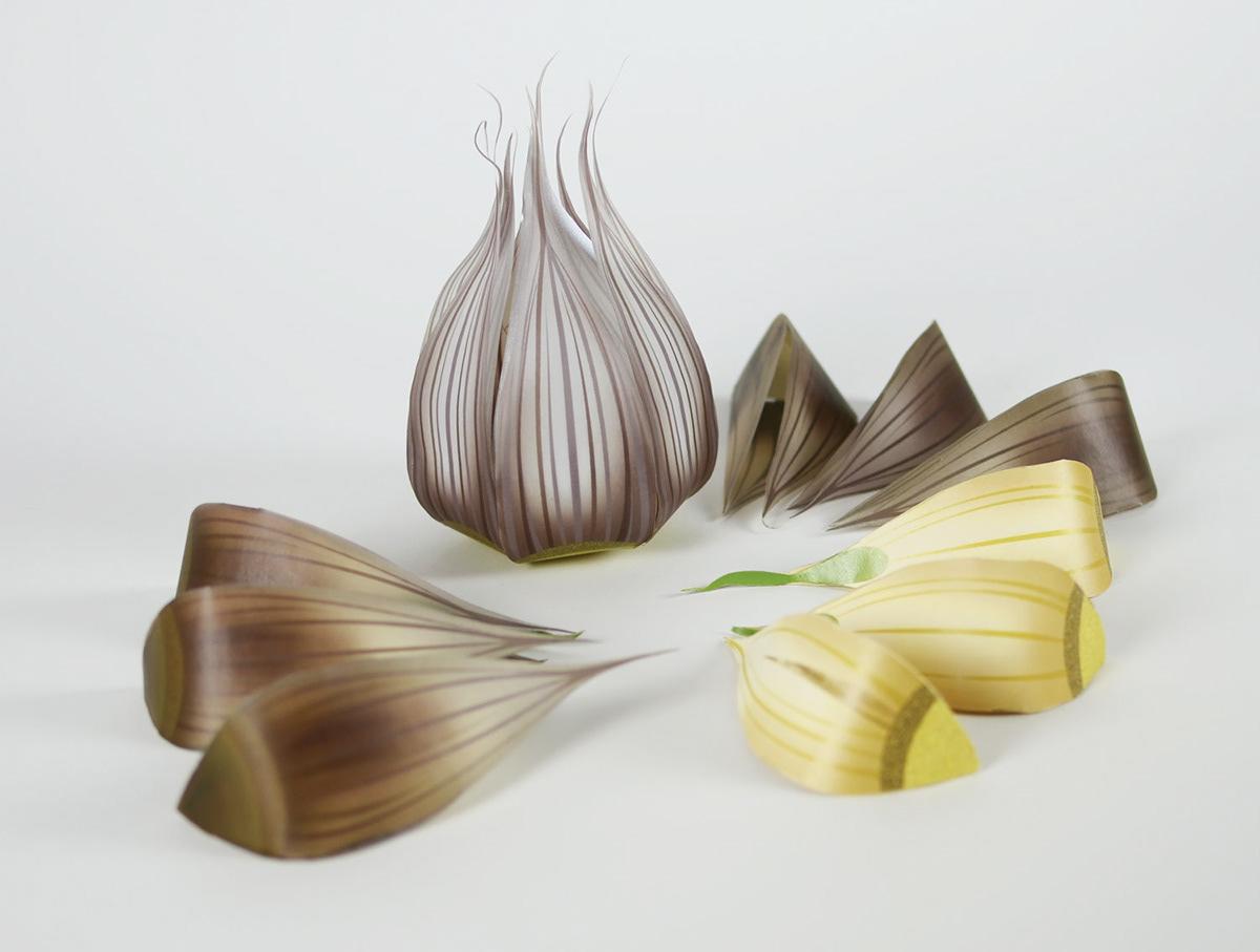 Garlic Packaging