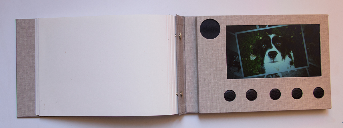 artbook portfolio digital digitalart art Photography  Collection Multimedia  Album creative