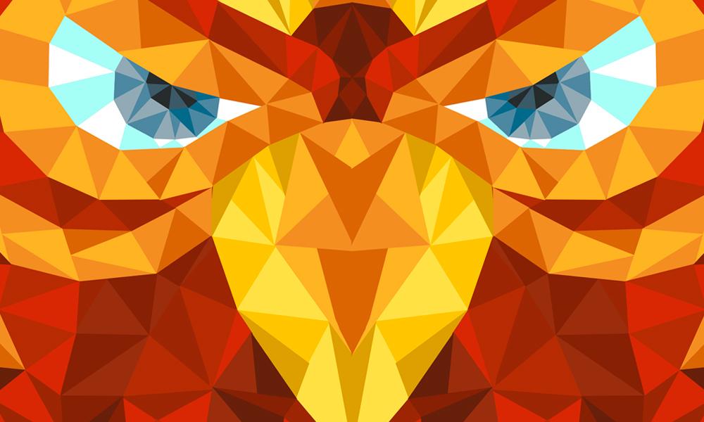 fernet argentina FOX eagle polygon flyer contest
