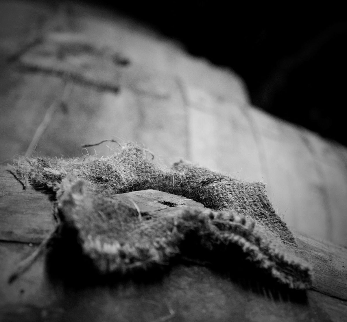 brewery distillery brewing distilling Whisky gin beer photo details