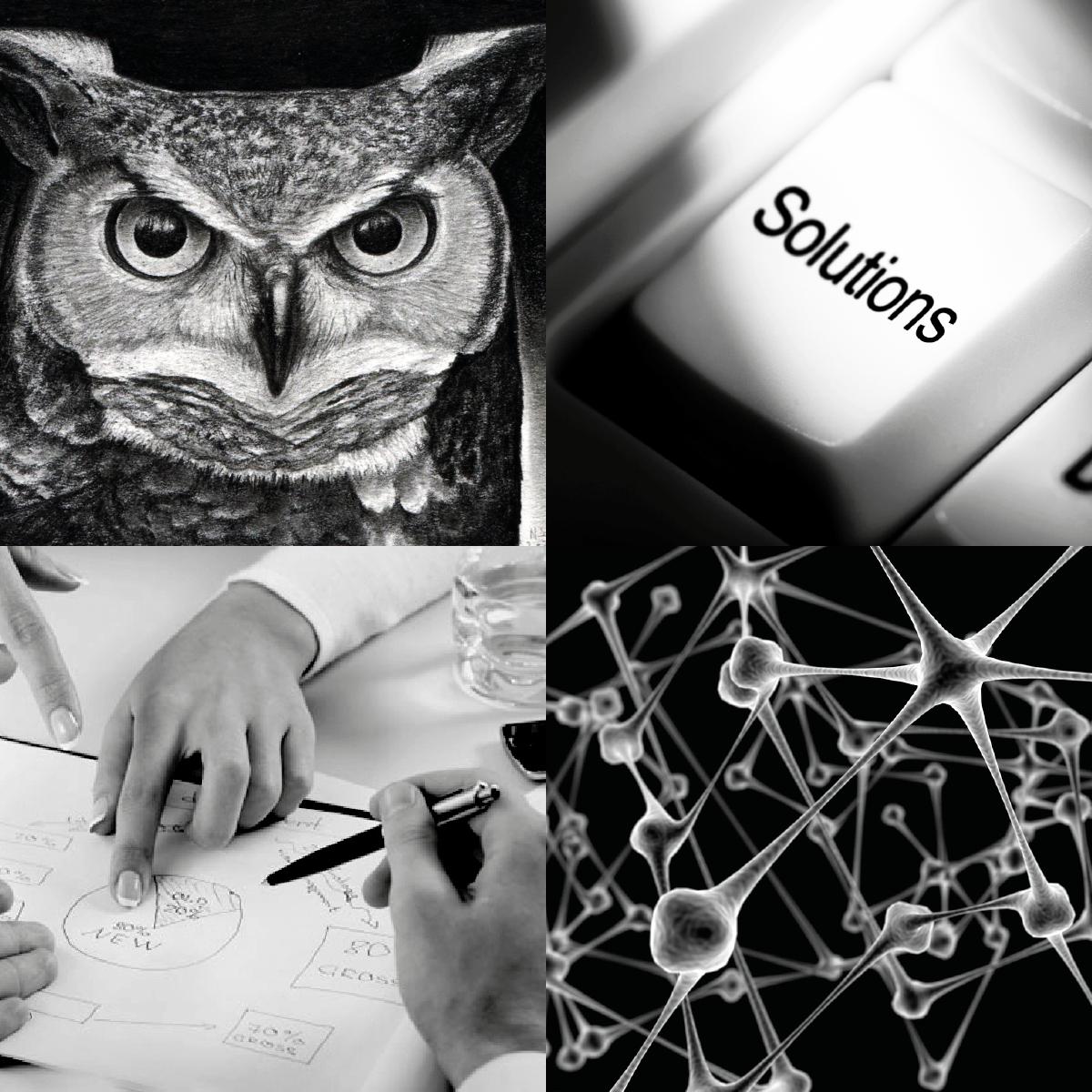 Responsive logo brand owl colorful flat identity Stationery technologies tech