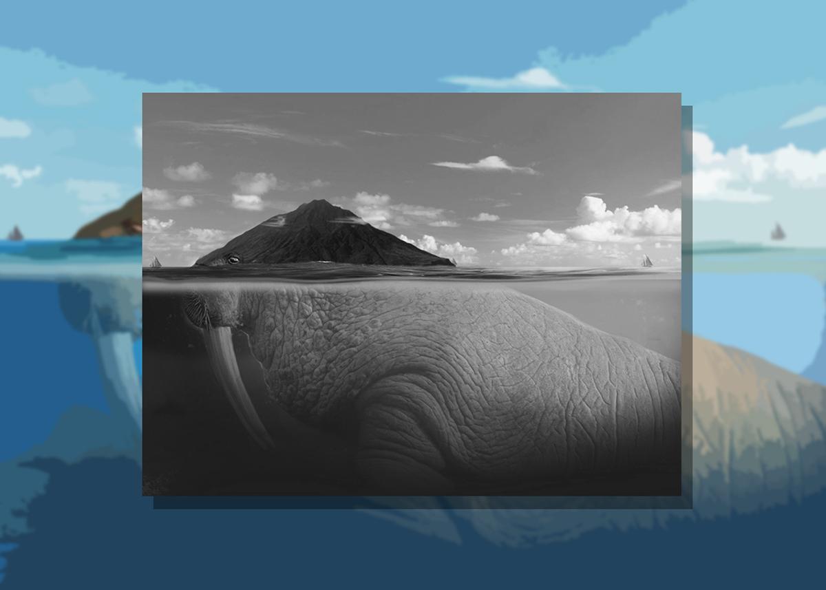 #tricheco #walrus #advertising #digitalart #retouching #compositing #photoshop #island #fantasy