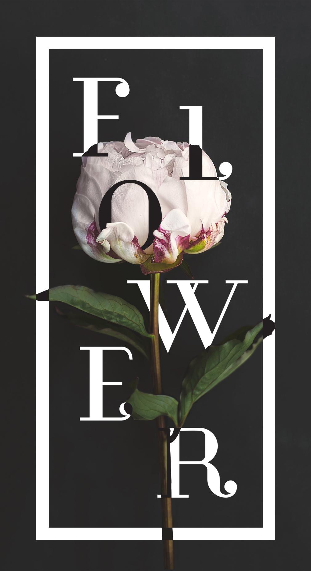 flower floral lettering poster glamour