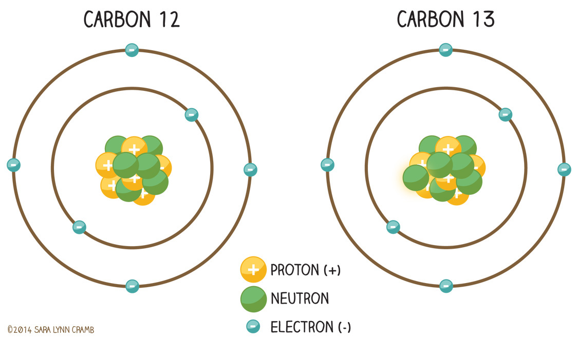 Isotopes of carbon 12 and 14 dating 7