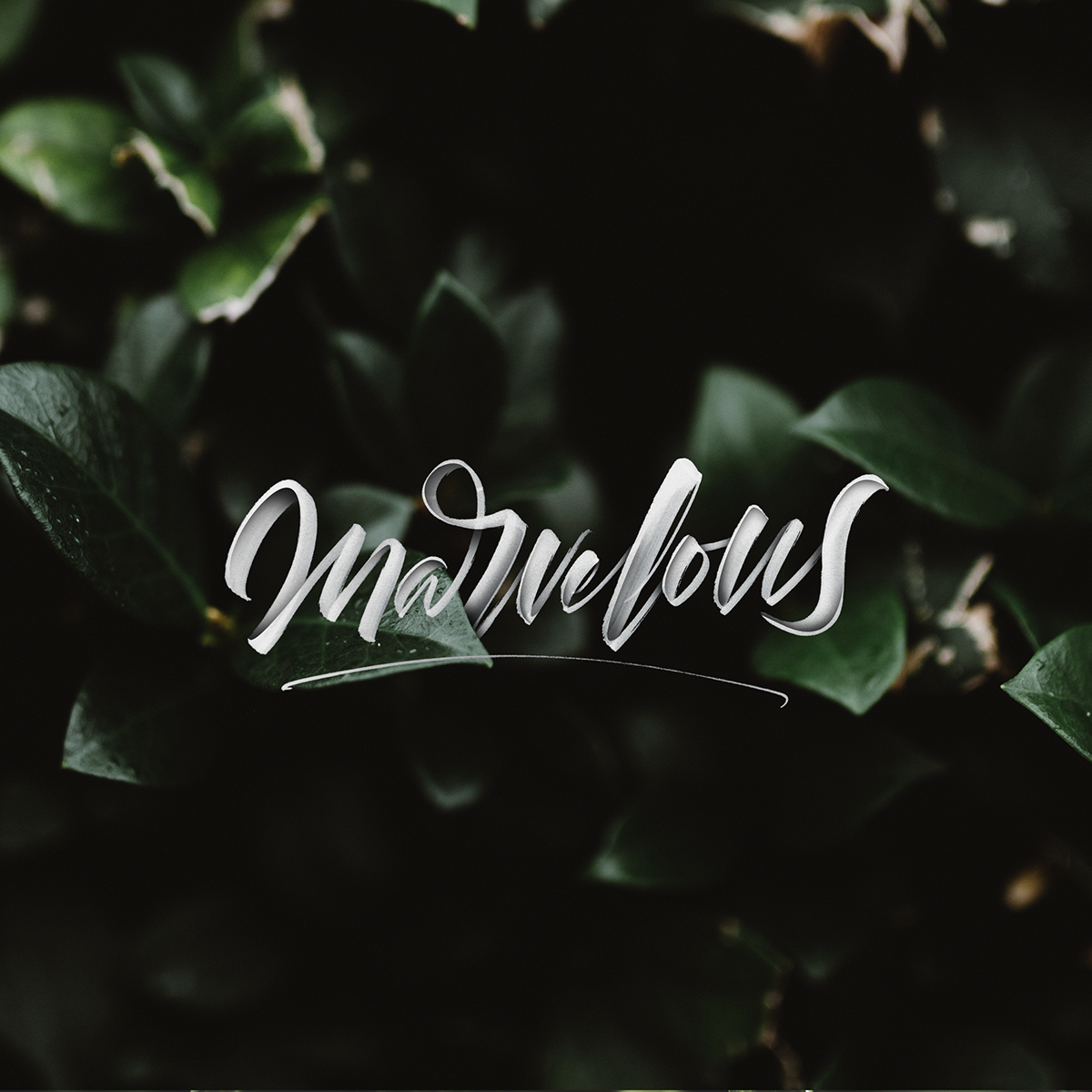 lettering hand-lettering instagram lettering lettering collection custom typography Custom Lettering Floral Lettering logo type HAND LETTERING lettering photography