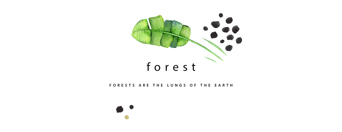 ILLUSTRATION  drawings packaging design posters animals Nature environment Ocean forest birds