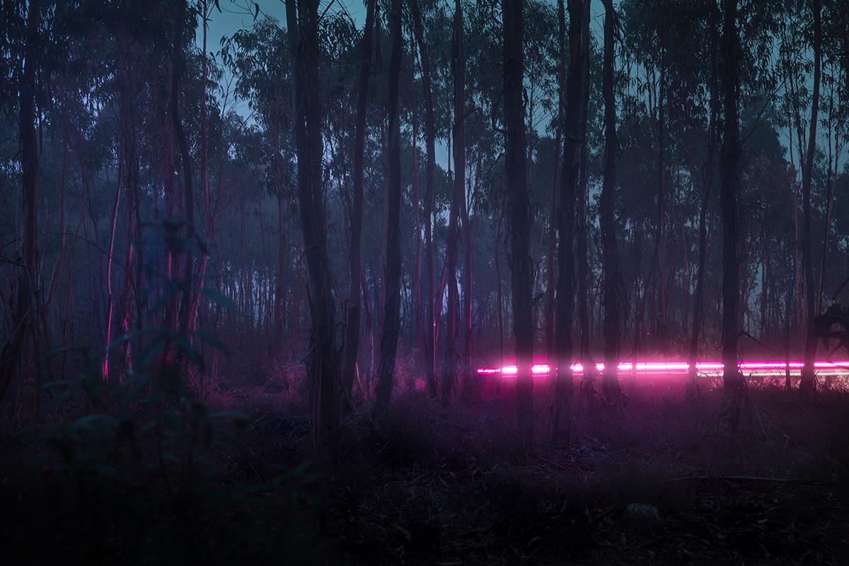 cinematic fog atmosphere mood night Film   landscapes darkness fine art