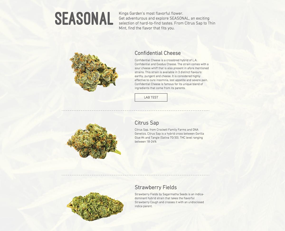 KINGS GARDEN inc  | Branding Design for Marijuana Farm on