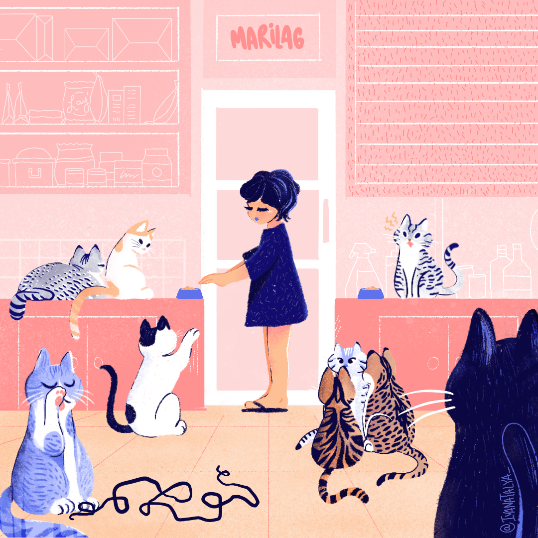 ILLUSTRATION  Procreate cats challenge