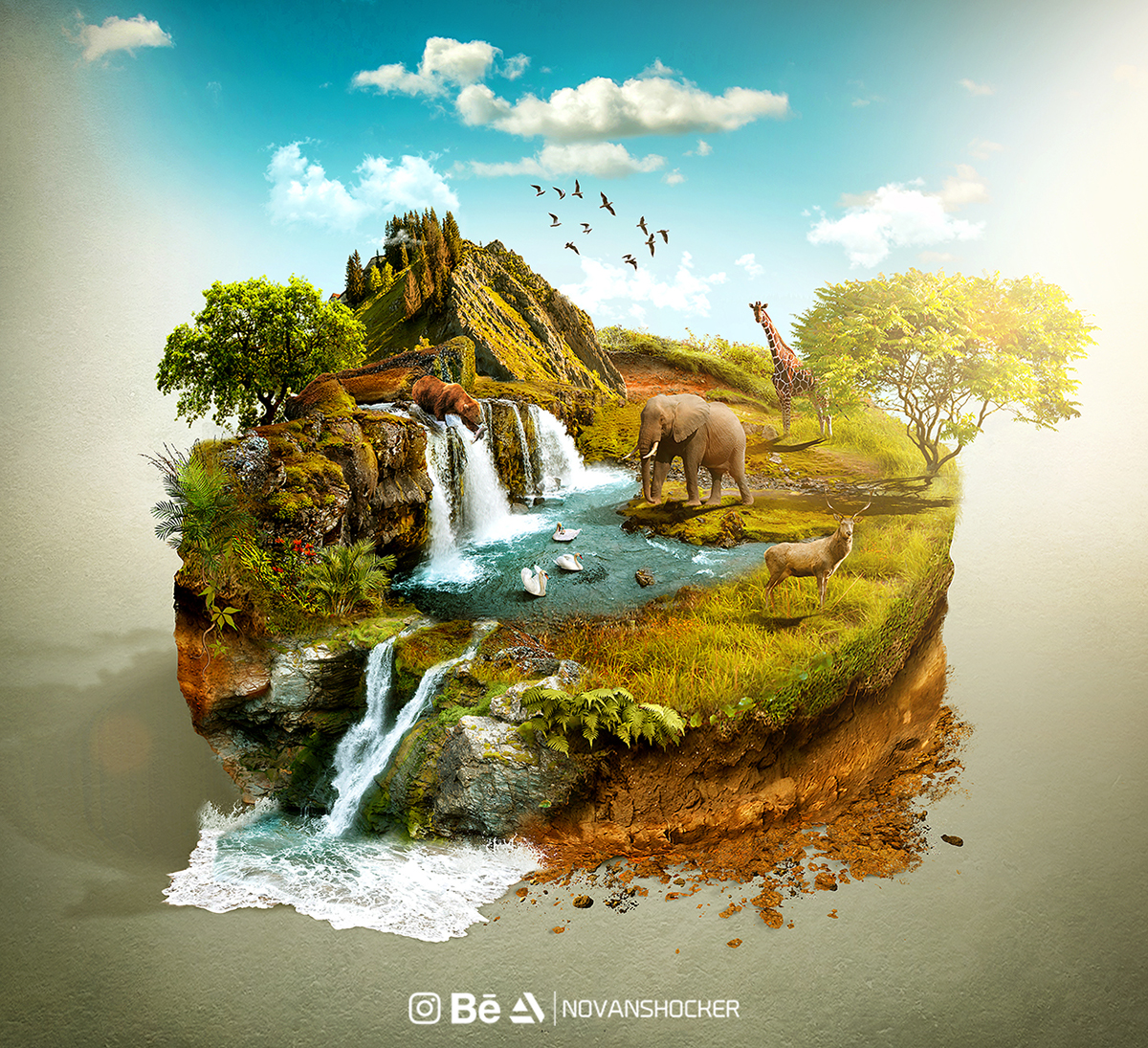 Natural World Campaign on Behance
